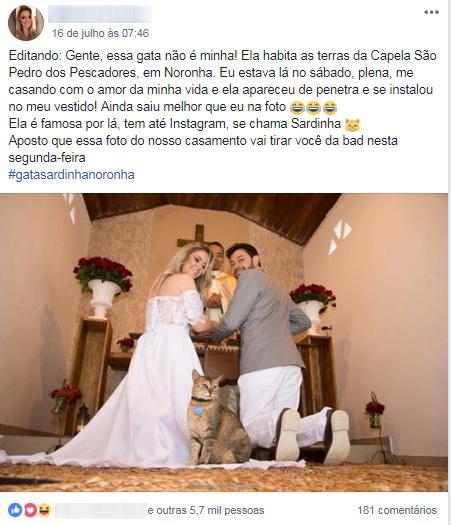 noiva gatinho altar Fernando de Noronha