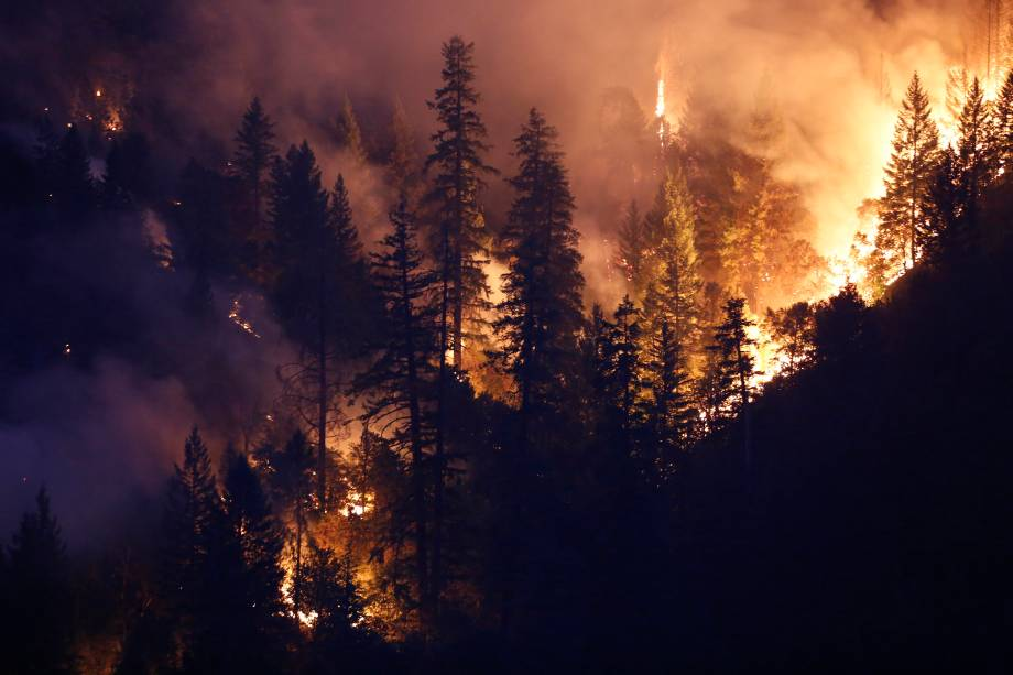 Área de floresta queima com as chamas do incêndio Carr a oeste de Redding, na Califórnia. Ao menos seis pessoas morreram e milhares deixaram suas residências desde o início do incêndio - 30/07/2018