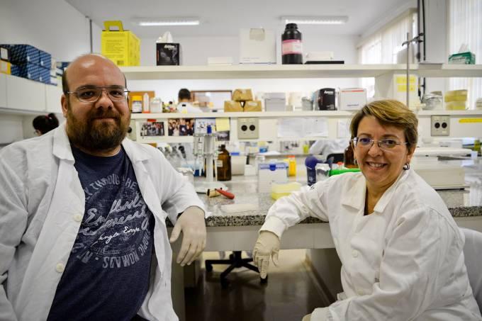 Os geneticistas Danilo Sforça e Anete Pereira de Souza, no laboratório da Unicamp