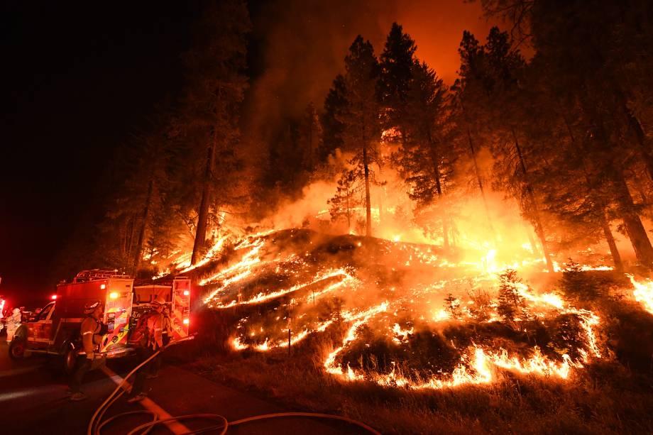 Bombeiros tentam controlar as chamas do incêndio Carr que continuam a se espalhar em direção às cidades de Douglas City e Lewiston perto de Redding, na Califórnia - 31/07/2018