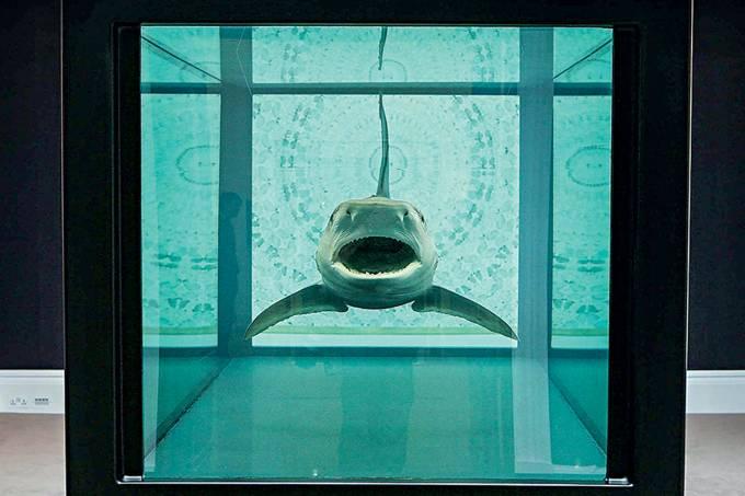 Tubarão de Damien Hirst
