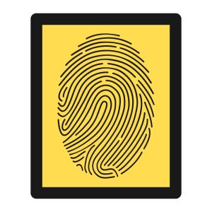 Guia do voto - Biometria