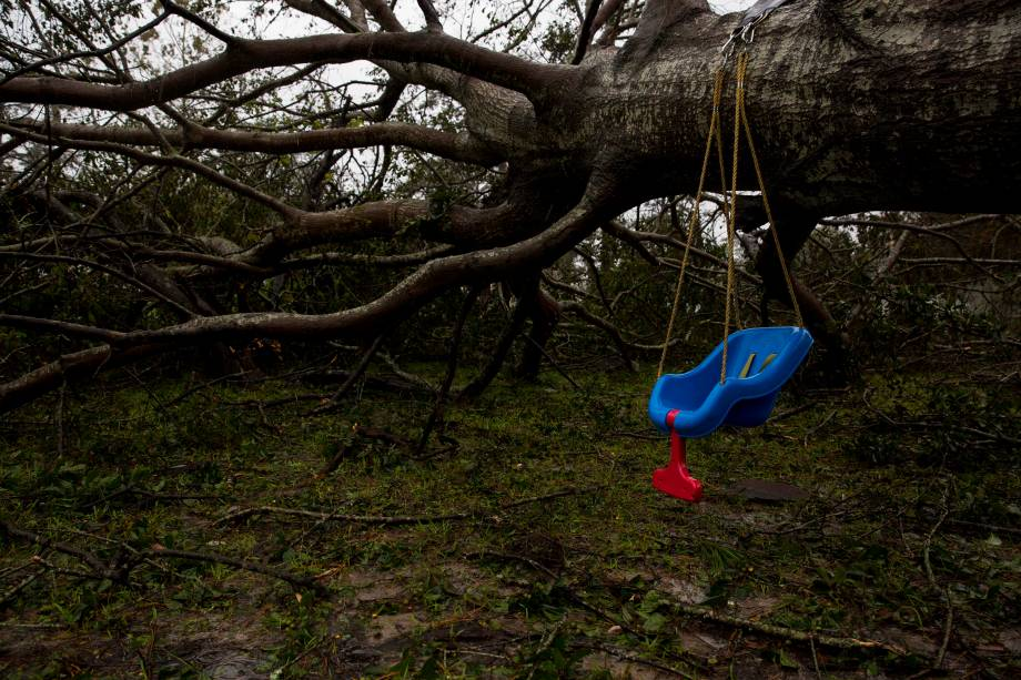 Árvore desaba sobre instalações habitacionais da Marine Corps Base Camp Lejeune e Marine Corps Air Station New River após passagem do furacão Florence, na Carolina do Norte - 15/09/2018