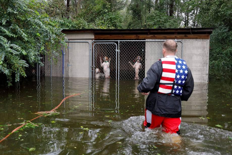 Cães em pânico abandonados em um canil por seu dono que fugiu das enchentes provocadas pela passagem do furacão Florence, são resgatados pelo voluntário Ryan Nichols em Leland, na Carolina do Norte - 16/09/2018