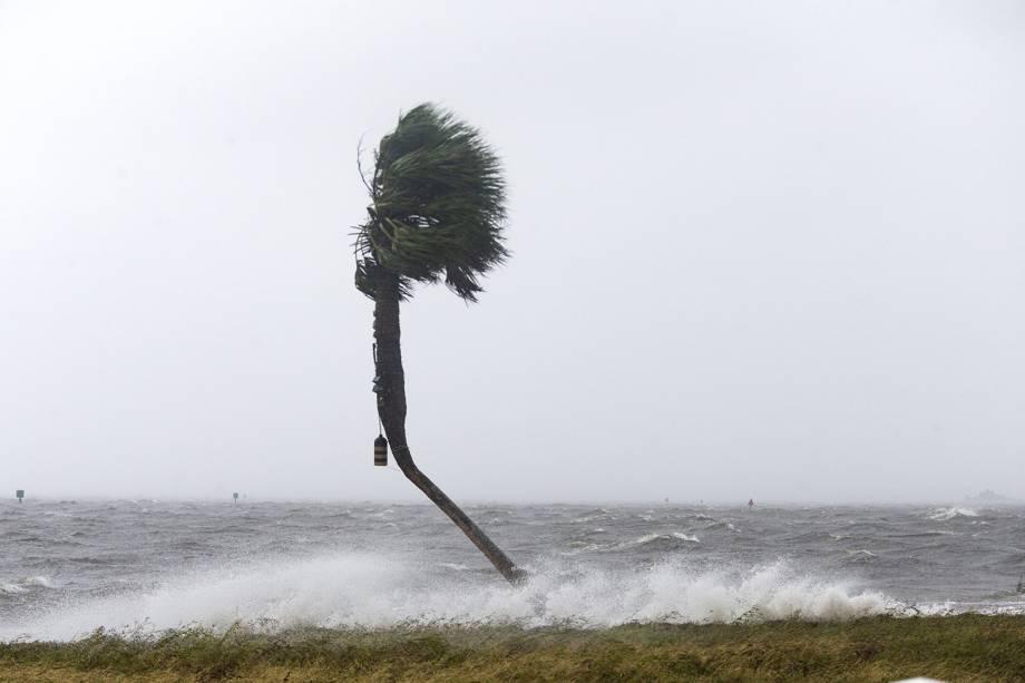 Tempestade causada pela passagem do furacão Michael - 10/10/2018