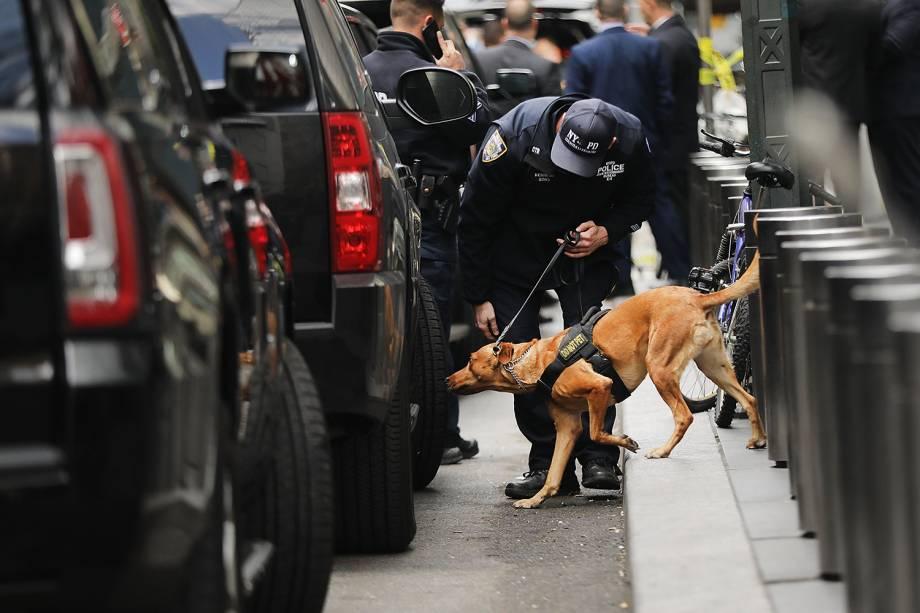 Cão farejador busca possíveis artefatos explosivos, nos arredores do Time Warner Center, em Nova York, após pacote suspeito ser enviado ao local - 24/10/2018