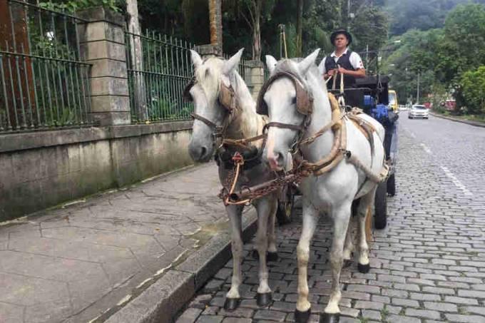 Charretes em Petrópolis
