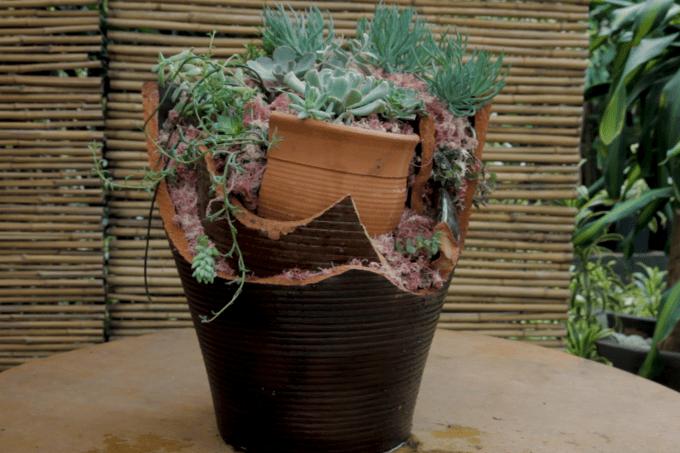 Vaso reconstruído – Jardineiro Casual