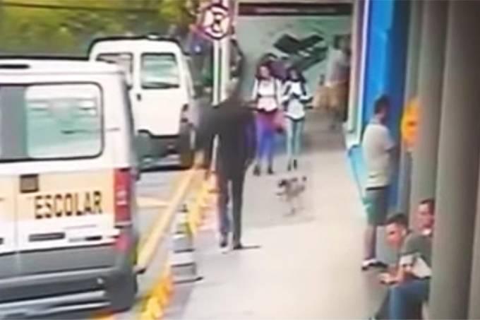 Cão é envenenado e morto em supermercado de Osasco
