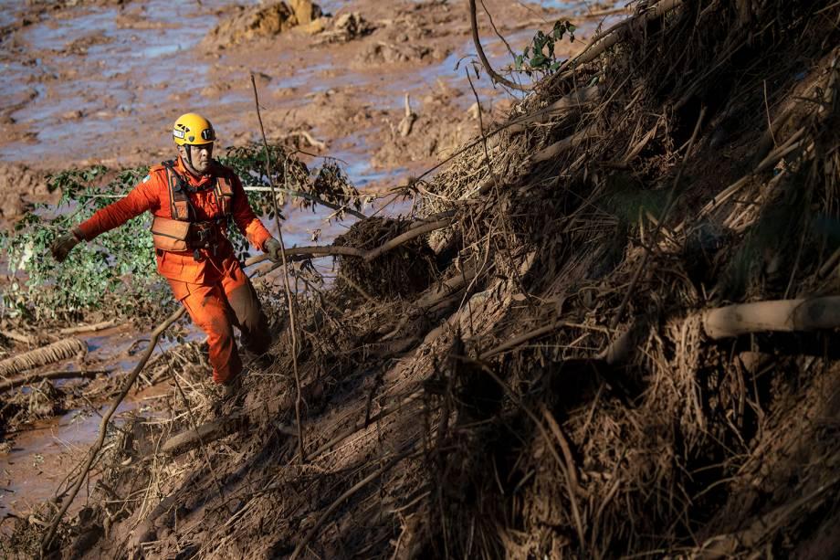 Bombeiro abre passagem na mata, para procurar possíveis sobreviventes do rompimento de barragem em Brumadinho (MG) - 28/01/2019