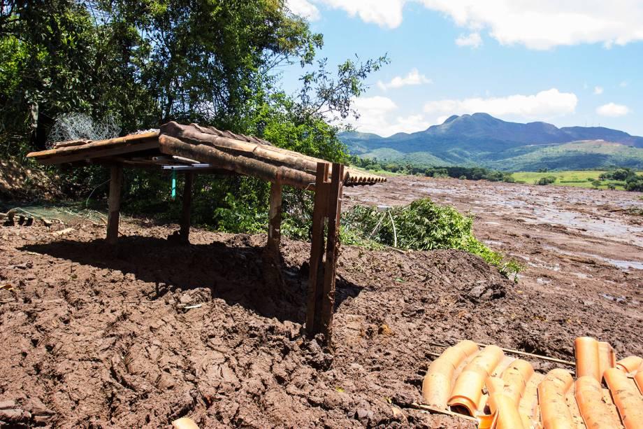 Área invadida pela lama após rompimento de barragem nos arredores do Córrego do Feijão, na cidade de Brumadinho (MG) - 28/01/2019