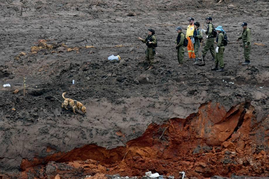 Soldados israelenses procuram por vítimas do rompimento de barragem em Brumadinho, Minas Gerais - 30/01/2019