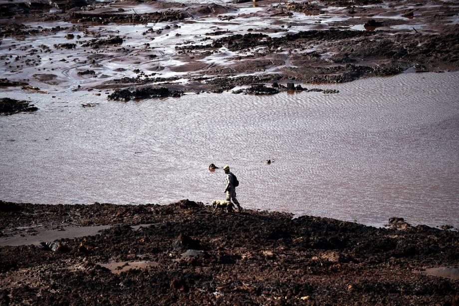 Bombeiro e cão farejador durante operação de resgate de vítimas após rompimento de barragem da mineradora Vale, em Brumadinho (MG) - 27/01/2019