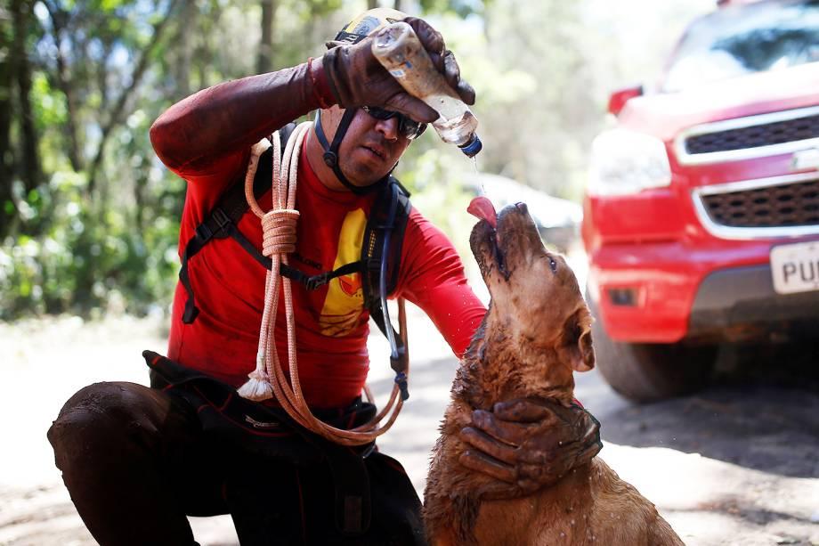 Bombeiro hidrata cão farejador após operação de resgate de vítimas do rompimento de barragem em Brumadinho (MG) - 30/01/2019