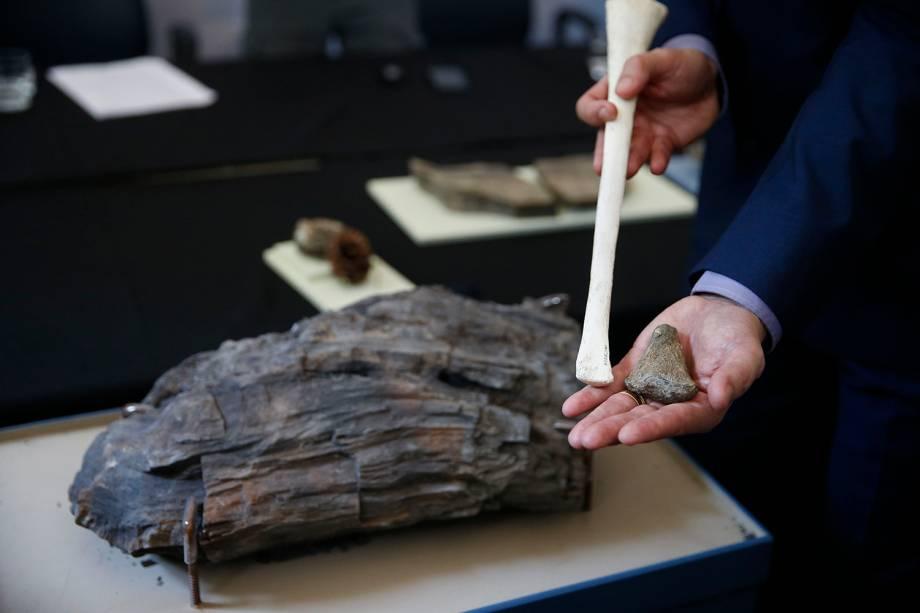 Fóssil de osso de pterossauro encontrado e tronco de pesquisas da Antártica na exposição 'Quando Nem Tudo era Gelo', organizada pelo Museu Nacional e exposta no Centro Cultural Casa da Moeda, no Rio - 16/01/2019