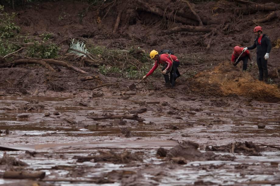 Bombeiros realizam buscas em meio à lama decorrente do rompimento da barragem da mineradora Vale em Brumadinho (MG) - 26/01/2019