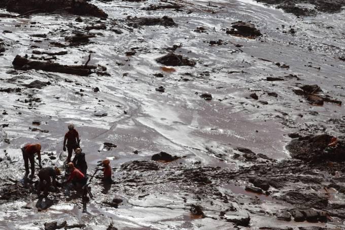 Oficiais do Corpo de Bombeiros Militar de Minas Gerais (CBMMG) realizam buscas na área atingida por lama em Brumadinho (MG)