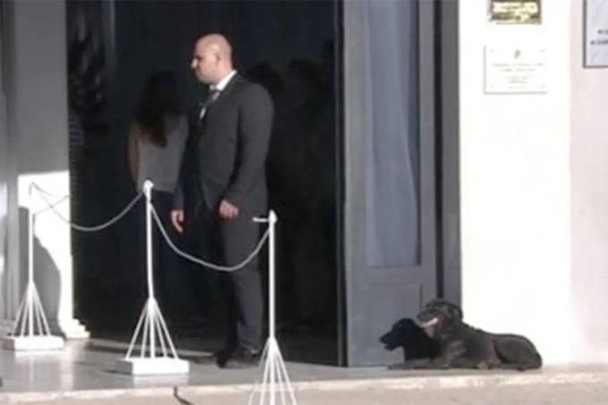 Nala, cachorra de Sala permanece por horas na porta de seu velório