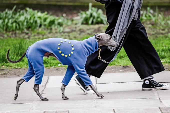 Protesto anti-Brexit
