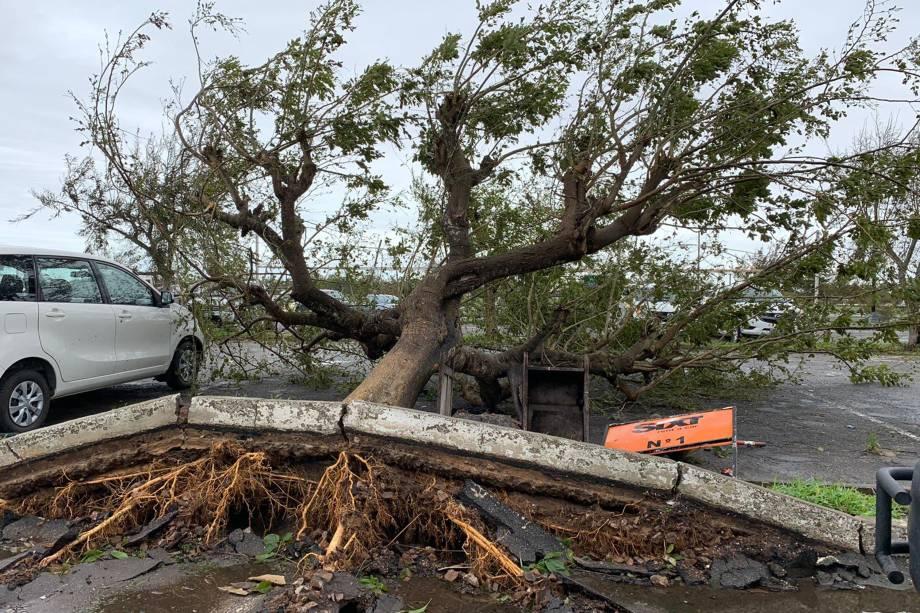 Destruição provocada pela passagem do ciclone Idai na cidade da Beira, Moçambique - 17/03/2019