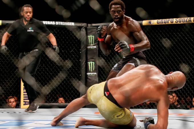 UFC 237: Cannonier v Silva