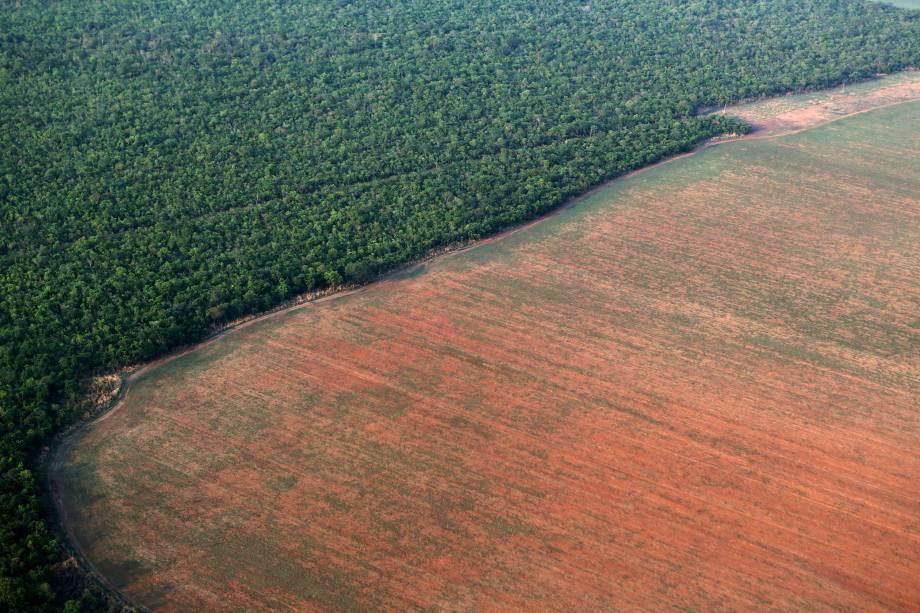 Área da floresta amazônica delimitada por terras desmatadas preparadas para o plantio de soja, no Mato Grosso