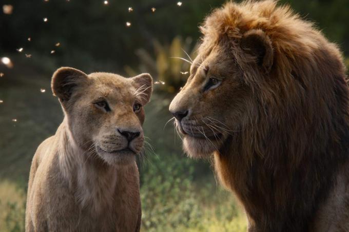 Nala e Simba em 'O Rei Leão'
