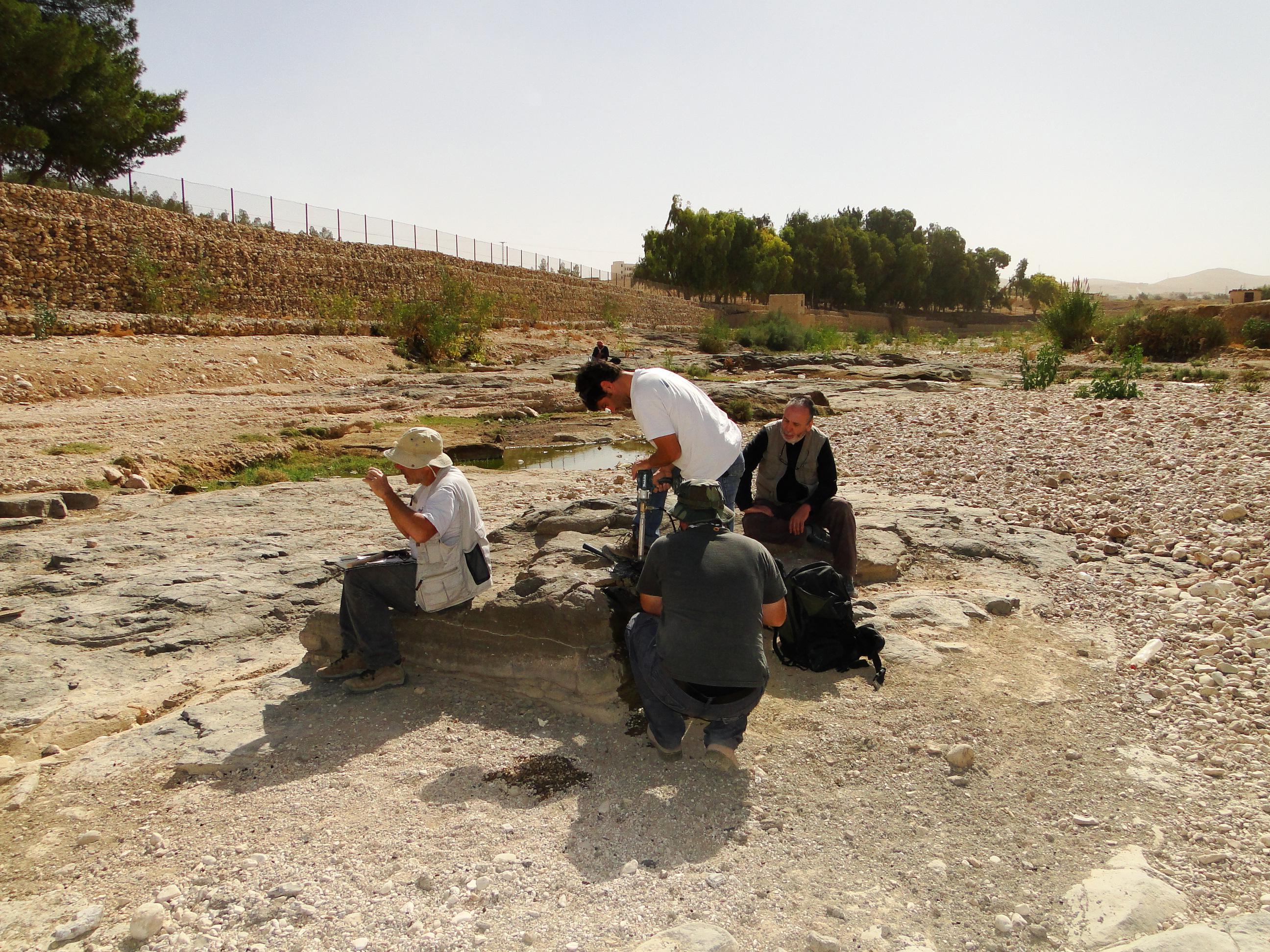 Walter Neves (no fundo, à direita) observa as escavações na Jordânia