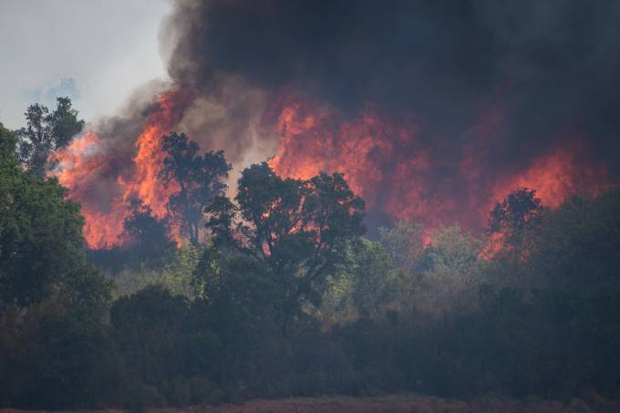 Fires In The South of France and To Help the Population.