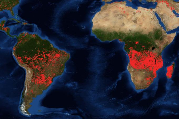 NASA Mapa de focos de incêndio