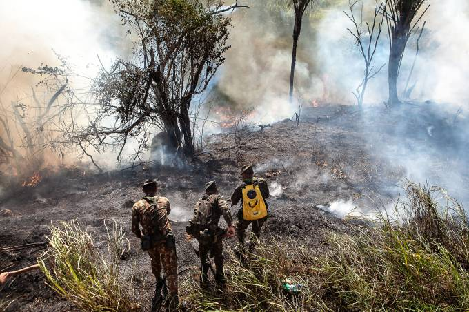 Treinamento do Corpo de Bombeiros para combater incêndio na Mata