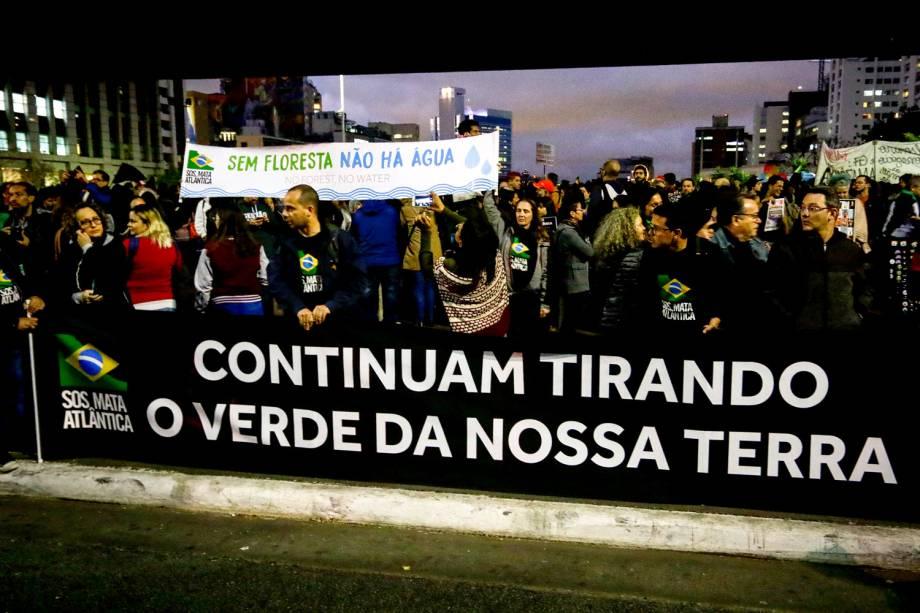 Manifestantes protestam em defesa da Amazônia na Avenida Paulista, em São Paulo - 23/8/2019