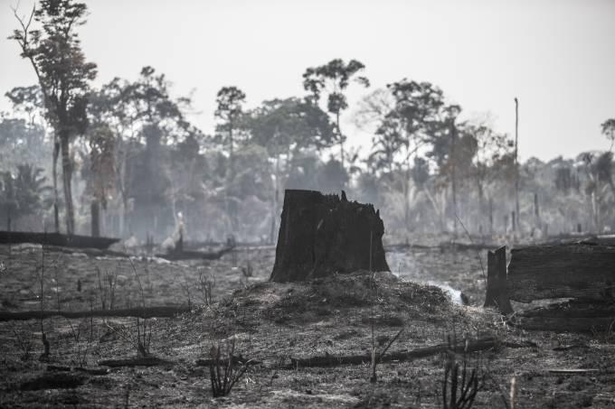 Incêndios na Amazonia – Cenas de áreas devastadas por fogo na região de Guariba, estado do Mato Grosso.  Foto: Jonne Roriz/VEJA