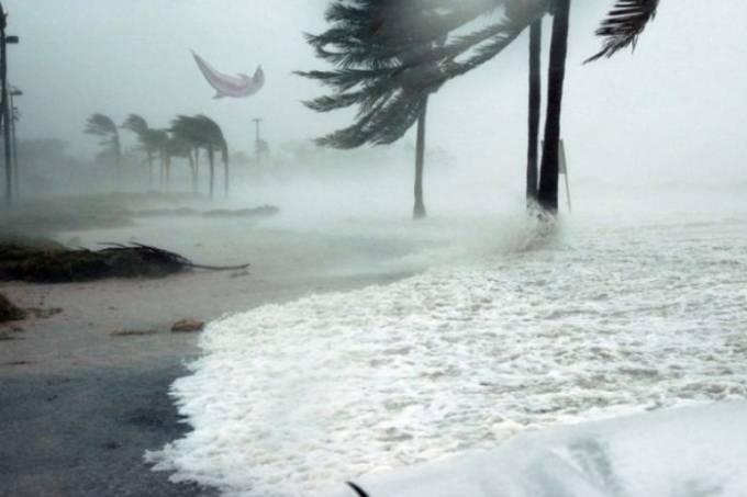 Foto Fake golfinho voando furacão Dorian