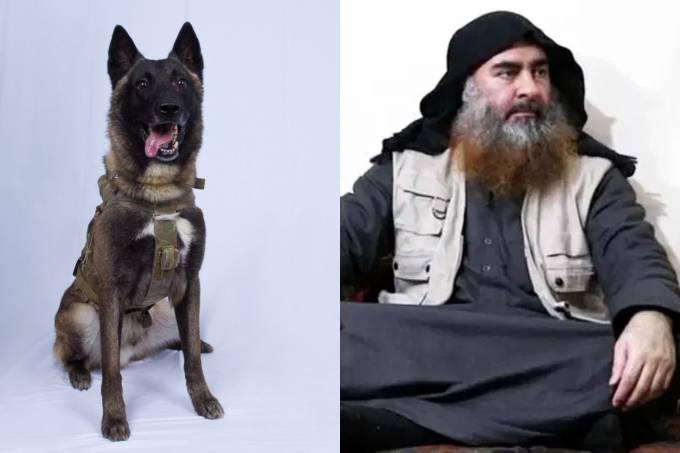 Cachorro Estado Islâmico