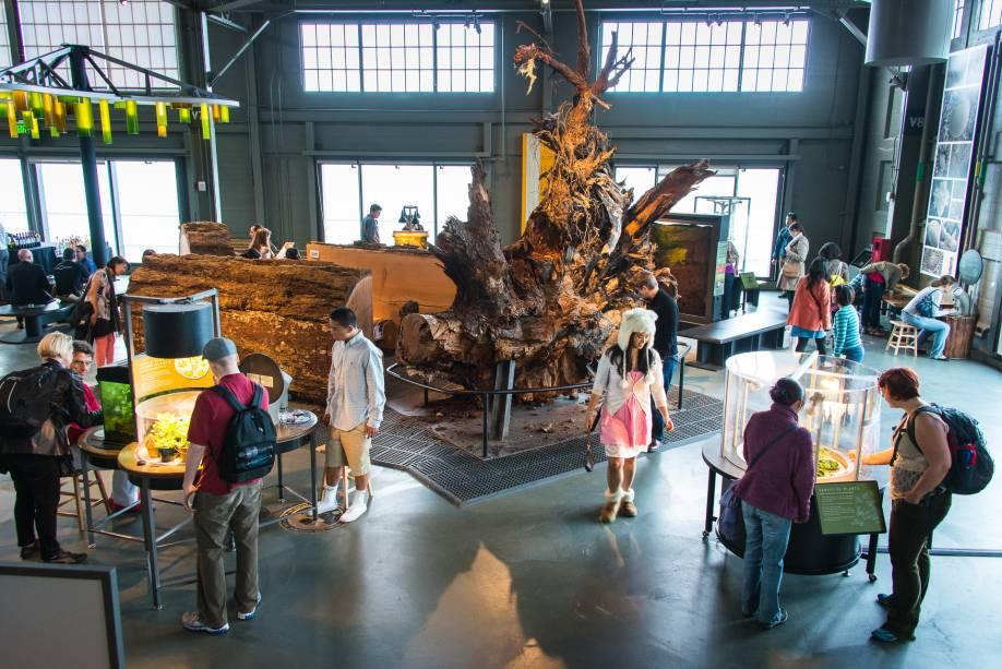 Área de ciências biológicas do museu Exploratorium de Sâo Francisco (EUA)