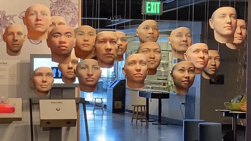 Instalação representando o DNA humano do museu Exploratorium de São Francisco (EUA)