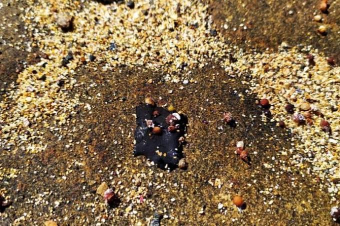 mancha de óleo Abrolhos