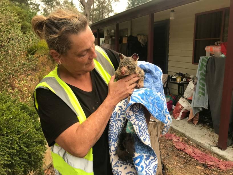 Voluntários resgatam um gambá dos incêndios florestais que ocorrem na Austrália 29/12/2019