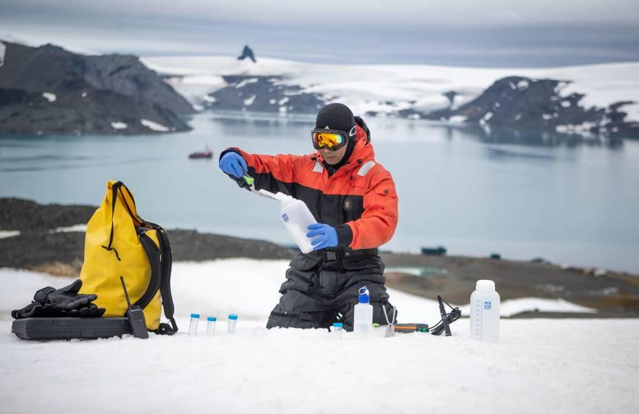 O pesquisador analisa fungos que vivem na neve para encontrar propriedades anticongelantes