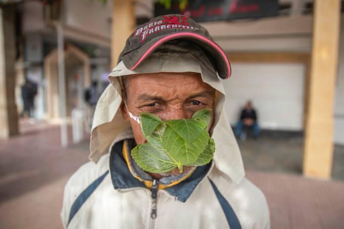 coronavírus máscara folha