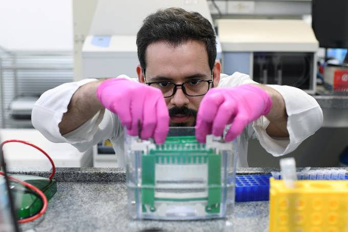 coronavírus-A researcher from the Institute of Biology at the Federal University of Rio de Janeiro (UFRJ) works to develop a new test to detect coronavirus infections in people, in Rio de Janeiro