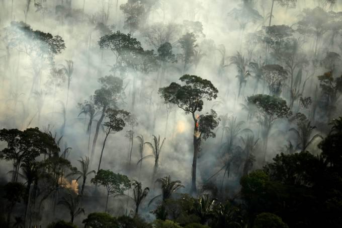 Amazônia Desmatamento Emissões CO2