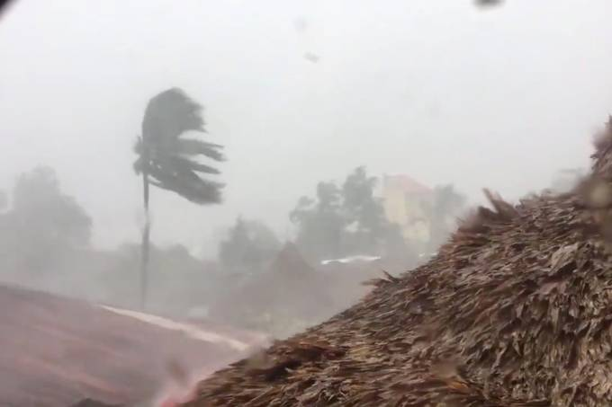 A general view of trees being blown by heavy winds during Typhoon Vongfong in San Francisco, Quezon province