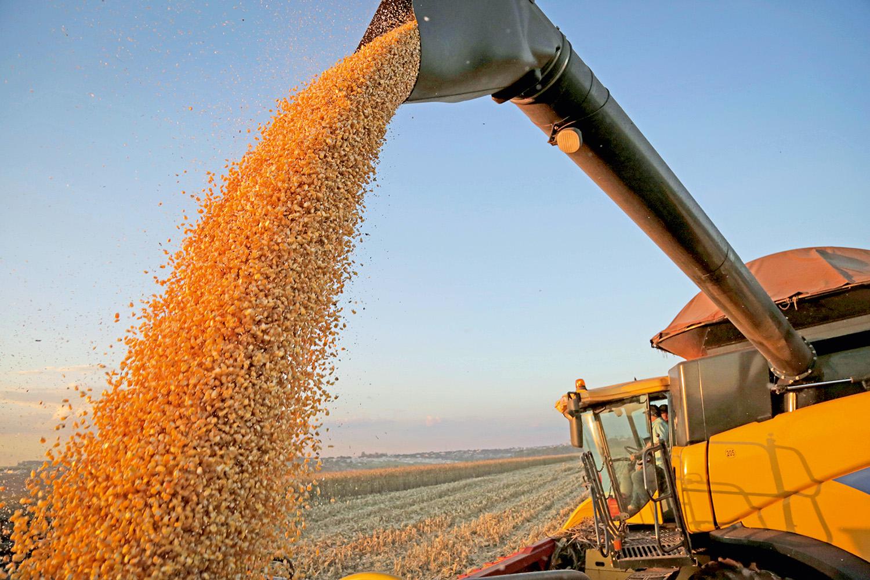 O que o agronegócio brasileiro deve esperar de Joe Biden? | VEJA