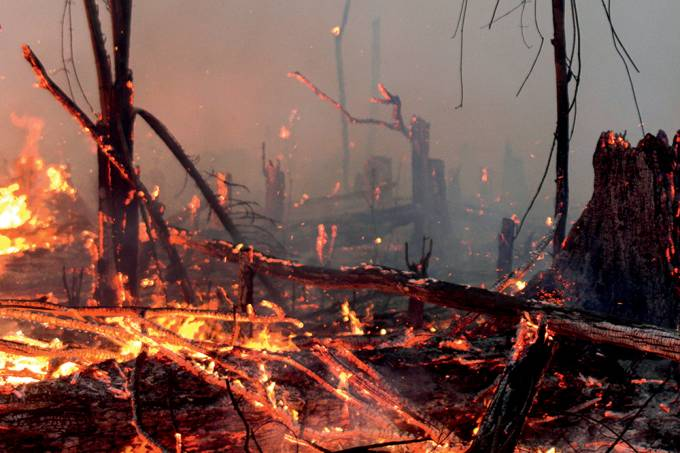 A fire burns a tract of Amazon jungle as it is cleared by a farmer in Machadinho do Oeste, Rondonia state