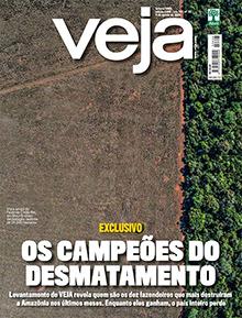 Leia em VEJA: Levantamento exclusivo revela os campeões da destruição. Mais: as mudanças do cotidiano na vida pós-pandemia