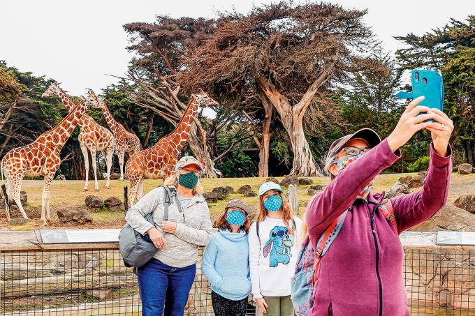 San Francisco Zoo & Gardens reopening amid coronavirus pandemic
