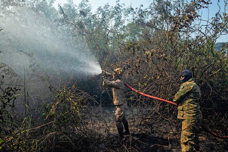 O fogo no Pantanal volta a queimar a imagem do país
