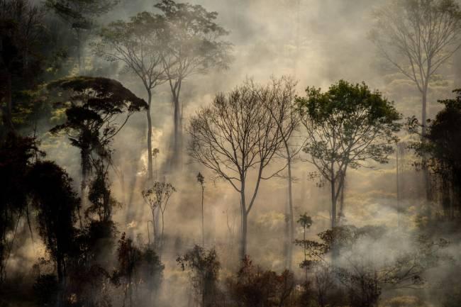 Foco de calor direto em floresta, próximo a área recém desmatada, com alerta Deter, em Alta Floresta (MT).Todos os anos, o Greenpeace Brasil realiza uma série de sobrevoos de monitoramento para registrar o avanço do desmatamento e das queimadas na Amazônia. Em julho de 2020, monitoramos pontos com alertas do Deter e de pontos de calor, do Inpe, nos estados do Pará e Mato Grosso.